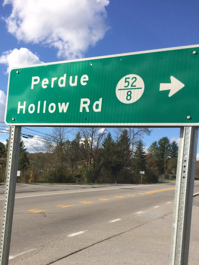 PERDUE HOLLOW REVISITED!